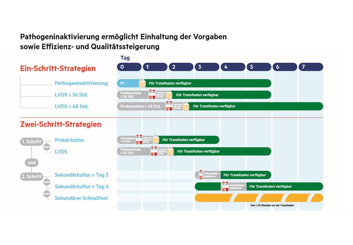flyer infographic DE